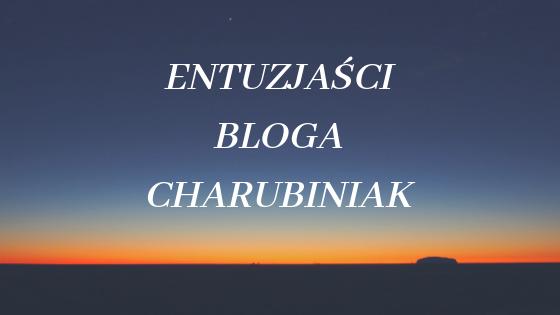 grupa entuzjastów bloga